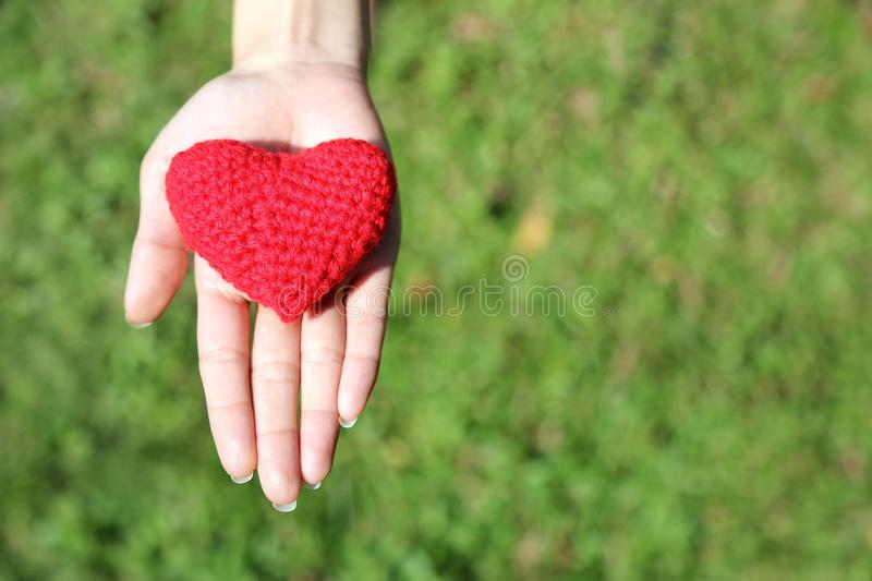 Woman hand giving red hand-made crocheted heart with green grass background and copy space. Valentine Day. Symbol of love. Woman hand giving red hand-made royalty free stock images