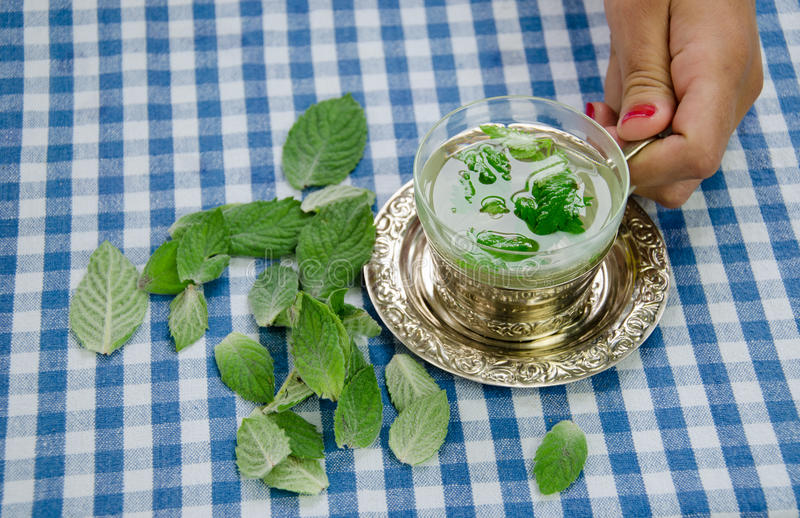 Woman hand hold cup with healing relaxing mint tea royalty free stock photography