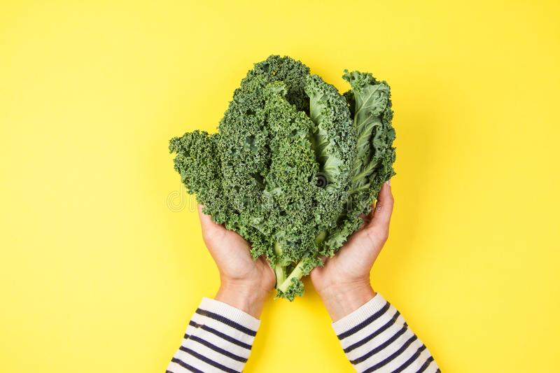 Woman hand holding a bunch of kale leaves over yellow background.  royalty free stock photos