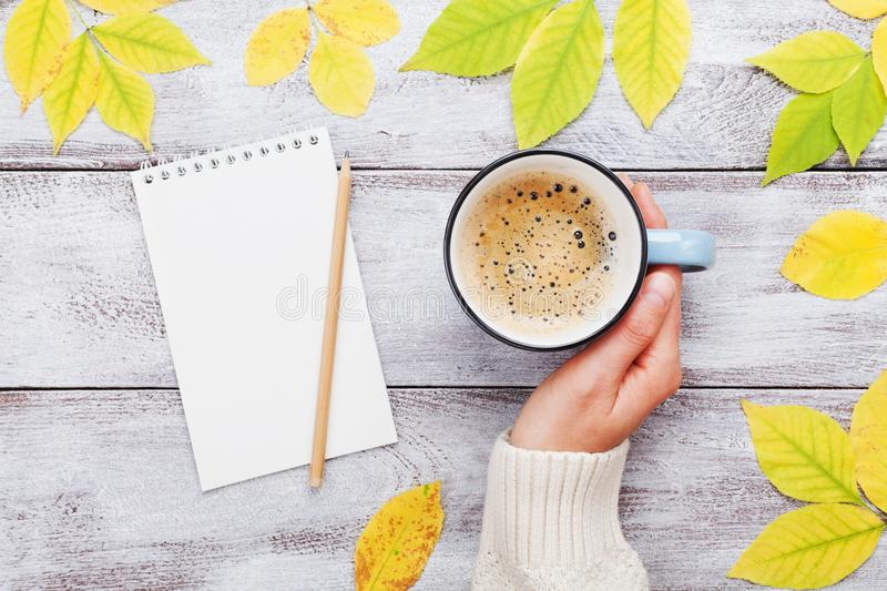 Woman hand holding cup of coffee, open notebook and autumn leaves on vintage wooden table top view. Cozy breakfast. royalty free stock photos