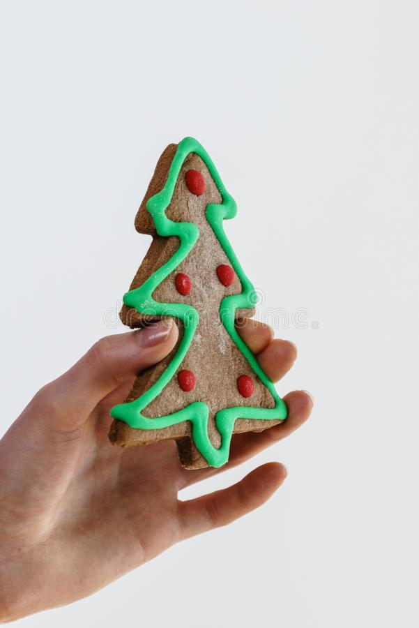 Hand holds christmas tree made of sweet gingerbread cookie. Woman hand holding little christmas tree made of sweet gingerbread cookie. Gray bakground stock image