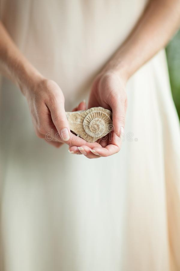 Woman hand holding little fossile ammonite, sensual studio shot with soft light royalty free stock image