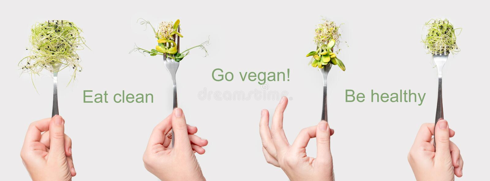 Woman hand holding micro greens on fork. Healthy eating, fresh garden produce organically grown. Symbol of health and. Vitamins from nature. Microgreens, vegan royalty free stock photo