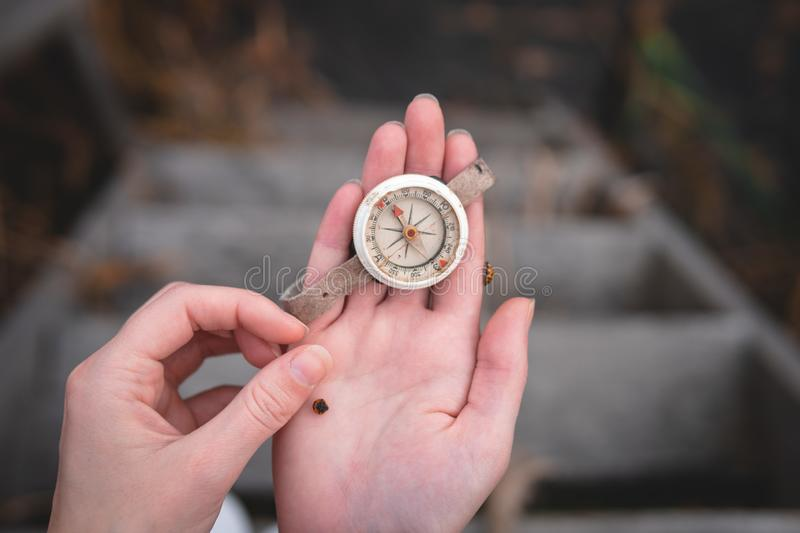Woman hand holding a old compass with broken glass and ladybug. Travel concept, path selection, navigation, tourism, hiking. stock photography