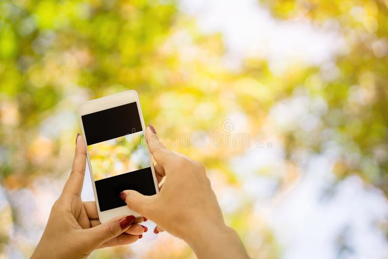 Woman hand holding smart phone blank screen outdoor with colorful of nature abstract bokeh background royalty free stock images