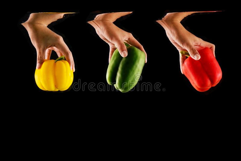 Woman Hand Holding Vegetable and Fresh Fruit Colorful Bell Peppers Isolated. Close Up Vegetarian Space. Concept Juicy Green, stock images