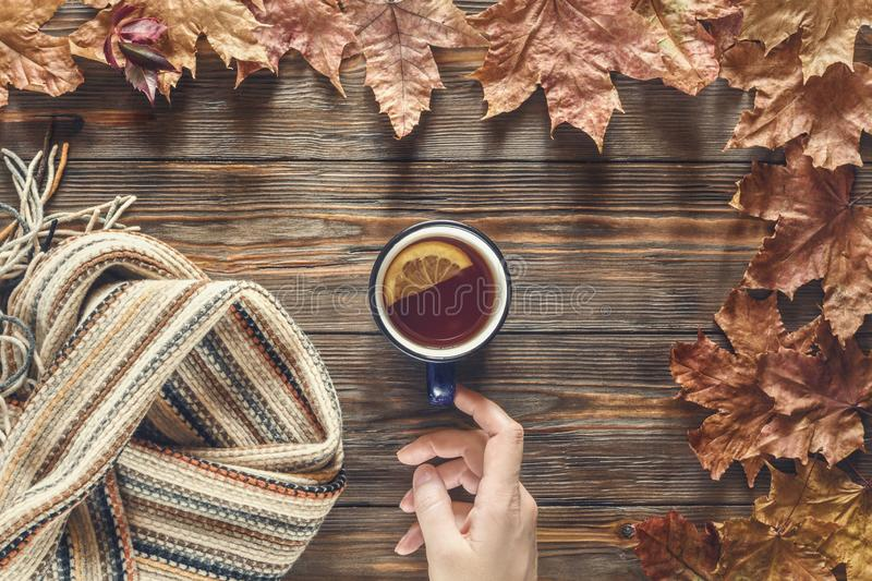 Woman hand holds for cup hot black tea Autumn fashion seasonal concept royalty free stock image
