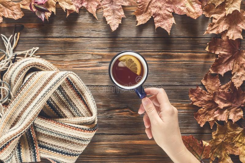 Woman hand holds for cup hot black tea Autumn fashion seasonal concept stock photography