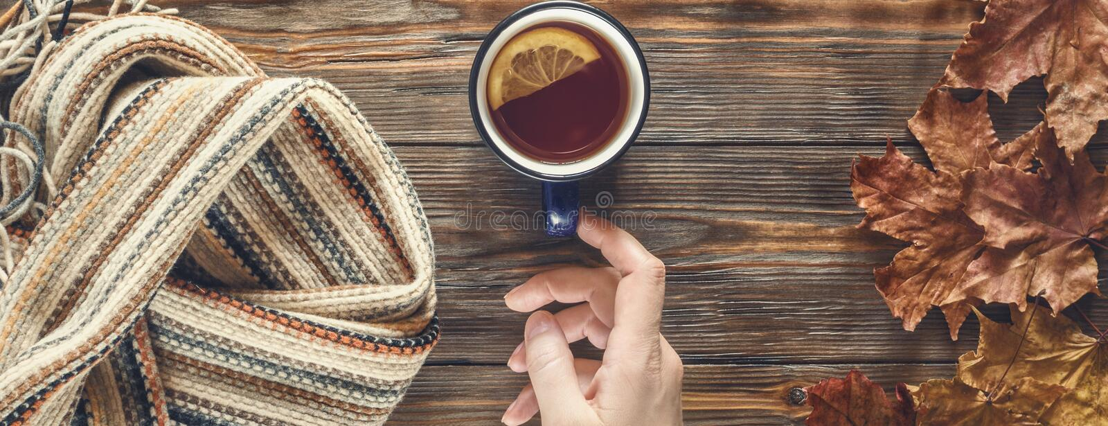 Woman hand holds for cup hot black tea Autumn fashion seasonal concept royalty free stock photos