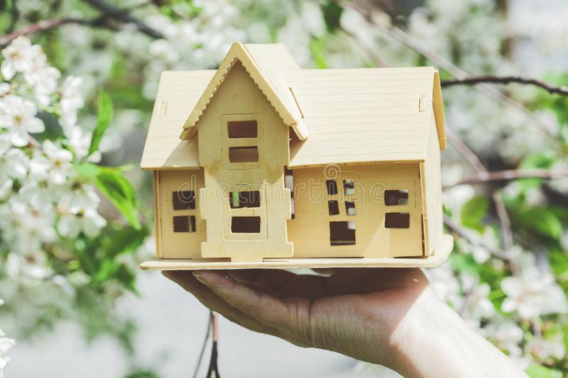 Woman hand house model. On flowers in tree stock photography