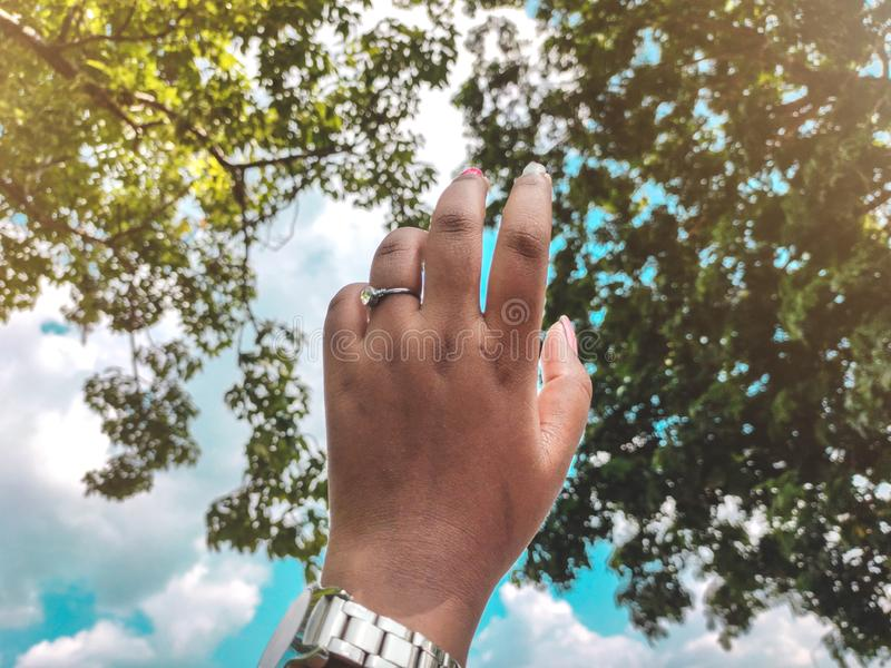 Woman hand pointing towards beautif sky and trees royalty free stock image
