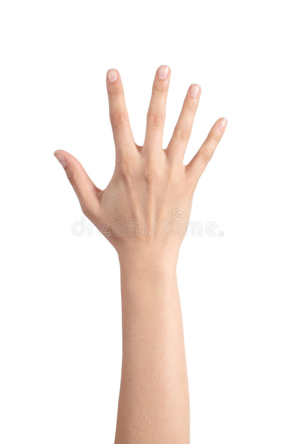 Woman hand showing the five fingers. Isolated on a white background stock photography