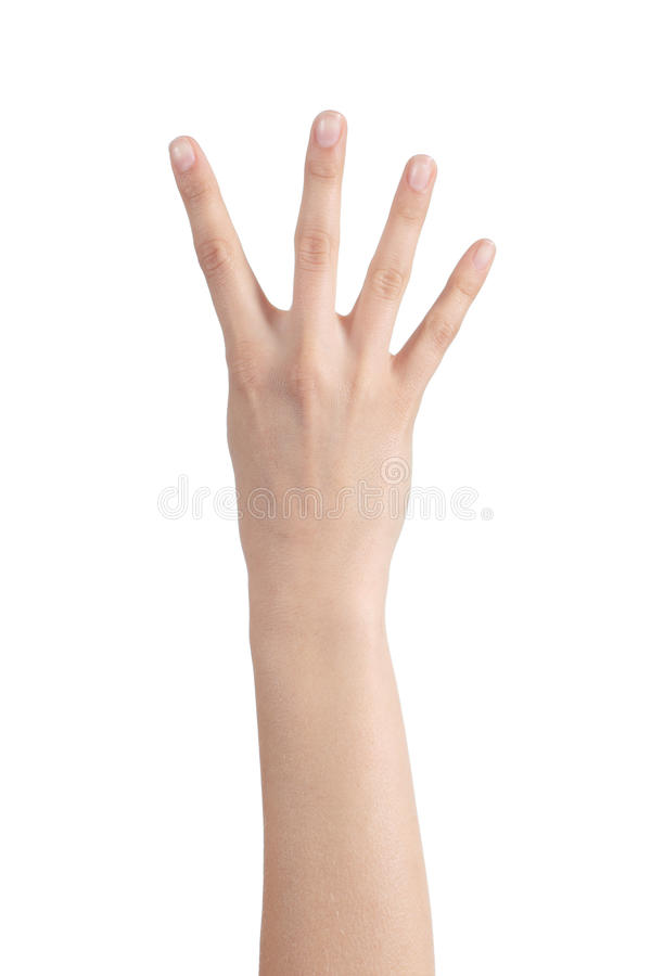 Download Woman Hand Showing Four Fingers Stock Photo - Image: 31142752