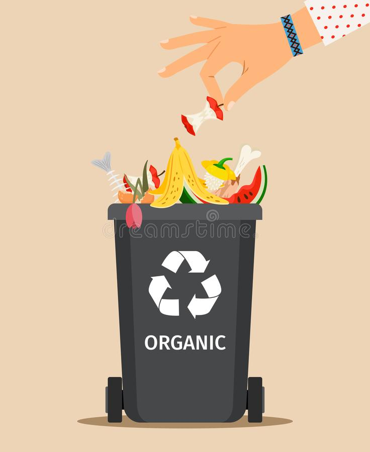 Woman hand throws organic garbage. Woman hand throws garbage into a organic container, vector illustration royalty free illustration
