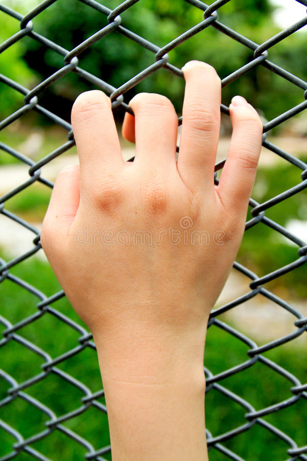 Woman hand on wire fence royalty free stock image