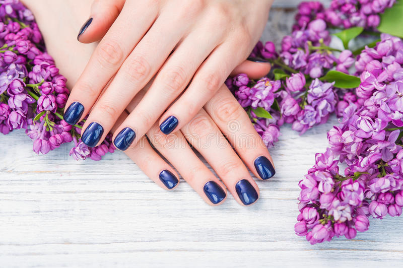 Woman hands with dark blue manicure and lilac flowers. Beauty treatment, woman hands with dark blue manicure and beautiful fresh lilac flowers royalty free stock images