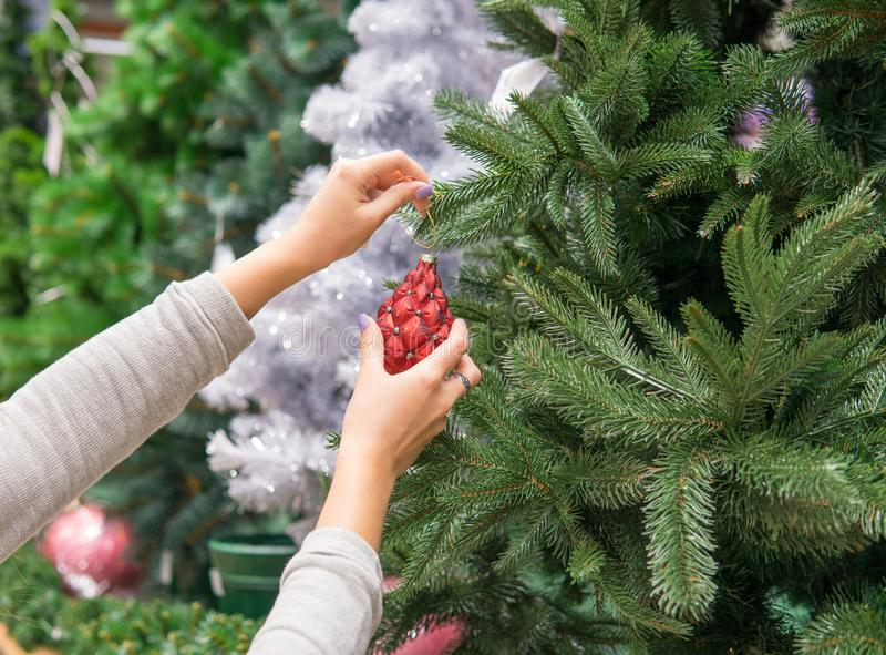 Woman's Hands Dressing Christmas Tree Stock Photo