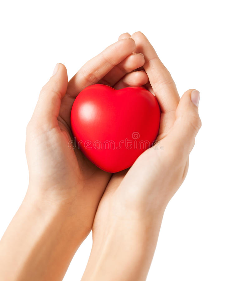 Download Woman hands with heart stock image. Image of birth, cardiac - 32103325