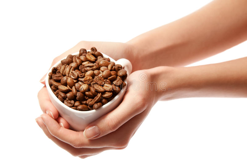 Woman hands holding coffee beans in cup isolated royalty free stock image