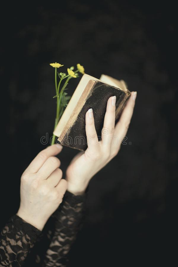 Woman hands holding vintage old book, very dark atmospheric sensual rural, gothic studio shot. Woman hands holding vintage old book with flower, very dark stock photo