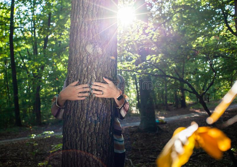 woman hands hugging a tree - fight climate change, save planet earth stock photos
