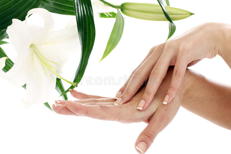 Woman hands and lilly flower royalty free stock photos