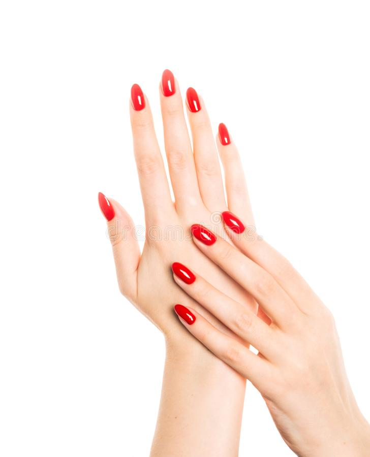 Woman hands with manicured red nails stock photography