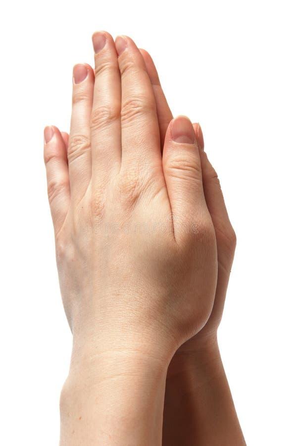 Woman Hands Symbolizing Prayer Stock Photography