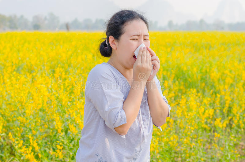 Woman has allergy at flower field. Asian woman has allergy from pollen at flower field stock image