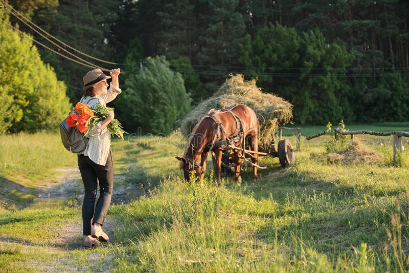 Woman in hat with bouquet of red poppies flowers walking along rural country road, back view. Rustic background, horse with grass stock photos