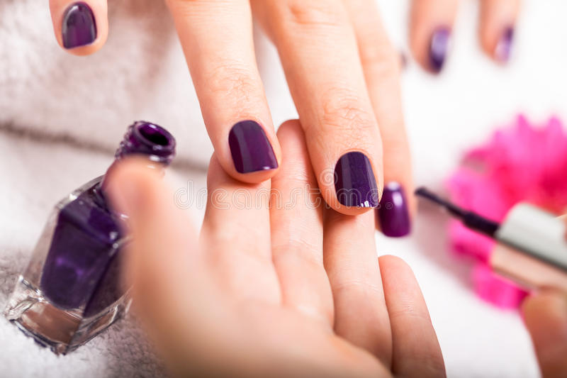 Woman having a nail manicure in a beauty salon. With a closeup view of a beautician applying rich purple nail varnish with an applicator royalty free stock photo