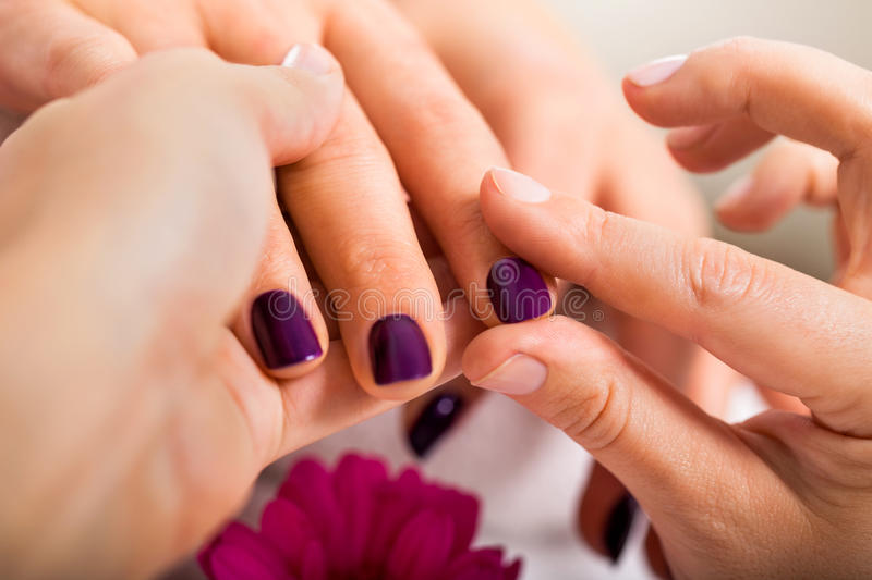 Woman having a nail manicure in a beauty salon. With a closeup view of a beautician applying rich purple nail varnish with an applicator royalty free stock images