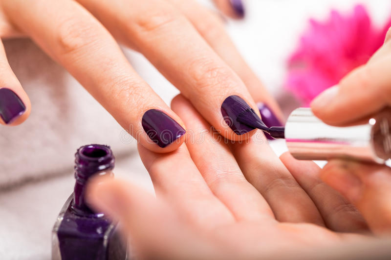 Woman having a nail manicure in a beauty salon. With a closeup view of a beautician applying rich purple nail varnish with an applicator stock photos