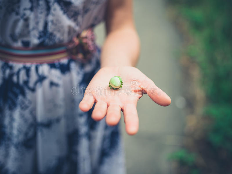 Woman with hazelnut in her hand royalty free stock images