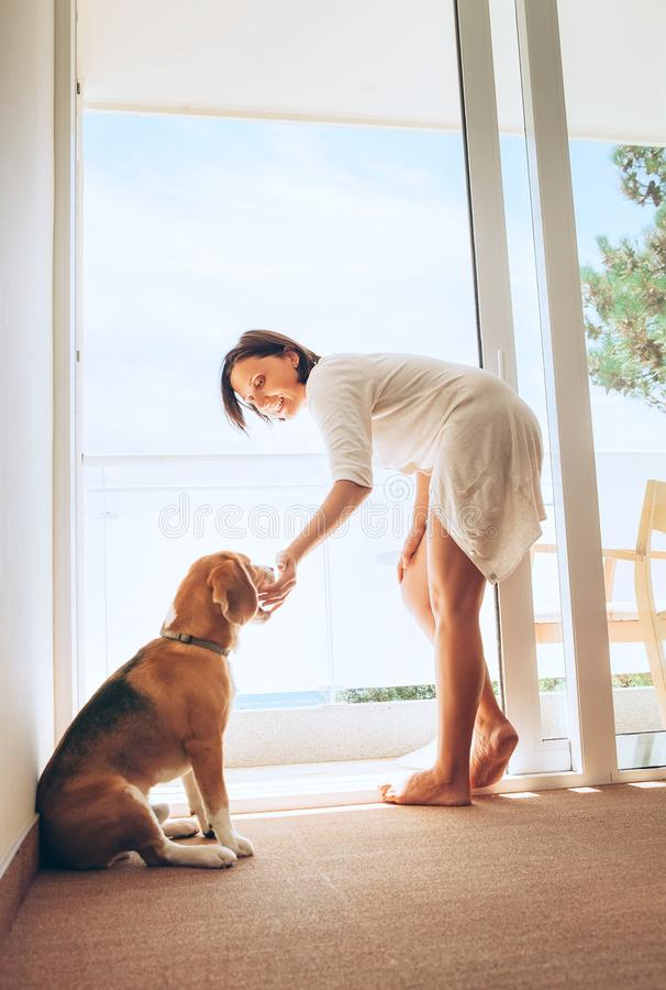 Woman with her beagle dog spend morning time on the sunny terrace stock photo