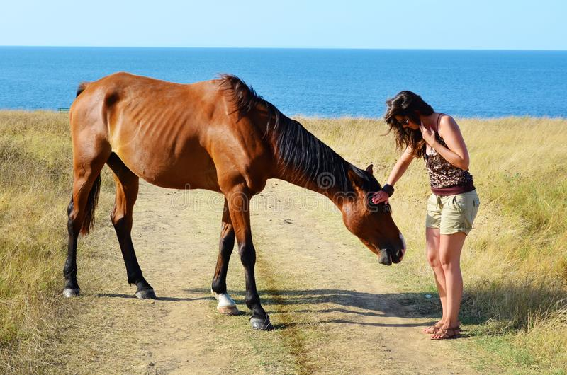 Woman and her Beautiful Red Wild Horse. Young woman walking with a red horse grazing in the meadow on the sea royalty free stock photo