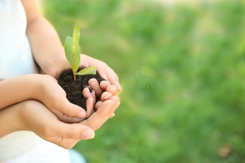 Woman and her child holding soil with green plant. In hands on blurred background. Family concept royalty free stock photography