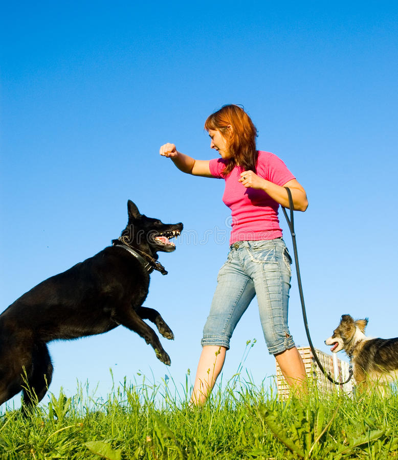 Woman with her dog royalty free stock photo