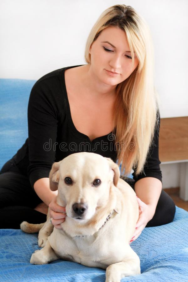 Woman with her dog in bed at home, relaxing in bedroom. Beautiful girl is playing, together and petting with dog in bed. Yellow labrador retriever climbed into royalty free stock photography