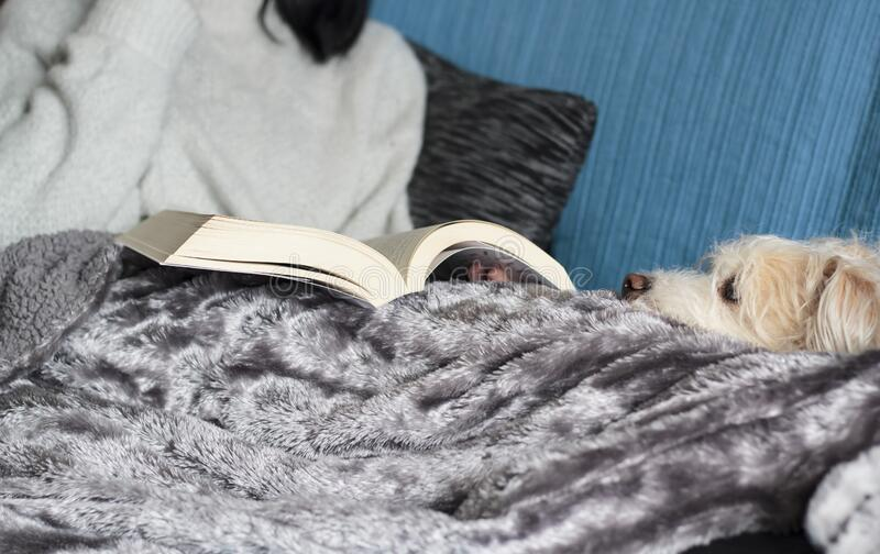 Woman with her dog relaxing and reading book.  stock photos