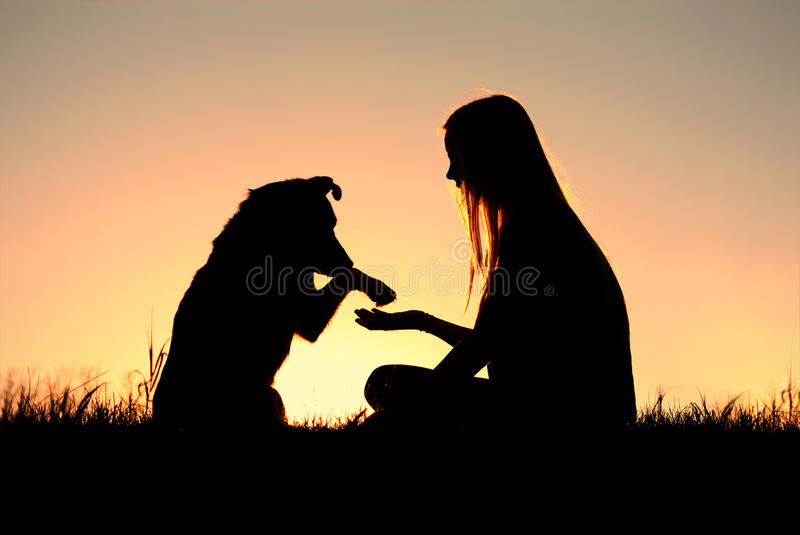 Woman and Her Dog Shaking Hands Silhouette royalty free stock photography