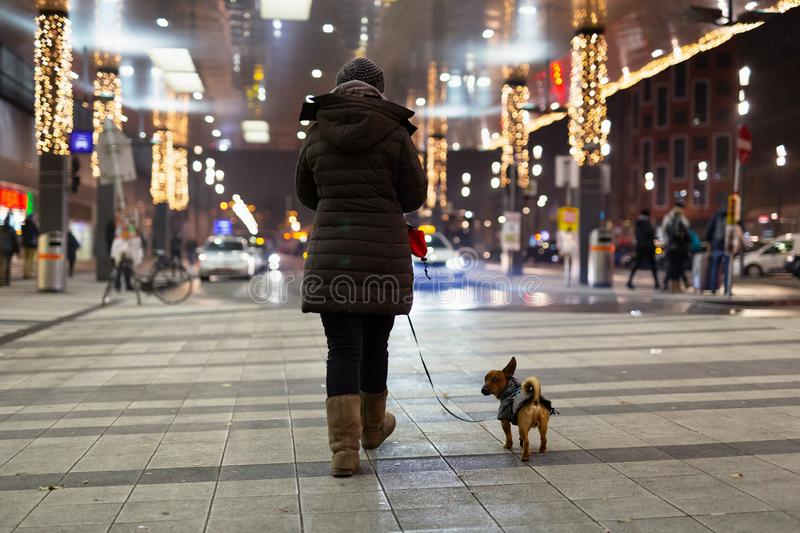 Woman and her dog walking in the cold winter night through the central station in Vienna royalty free stock image