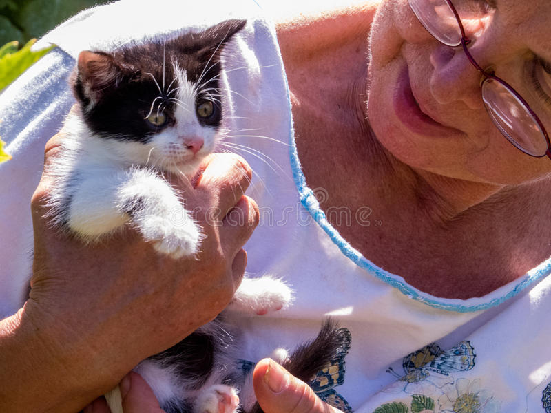Woman with her kitten. Woman holding cute kitten with funny expression in her hands royalty free stock photo