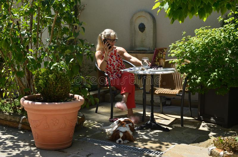 Woman with her laptop and dog royalty free stock images