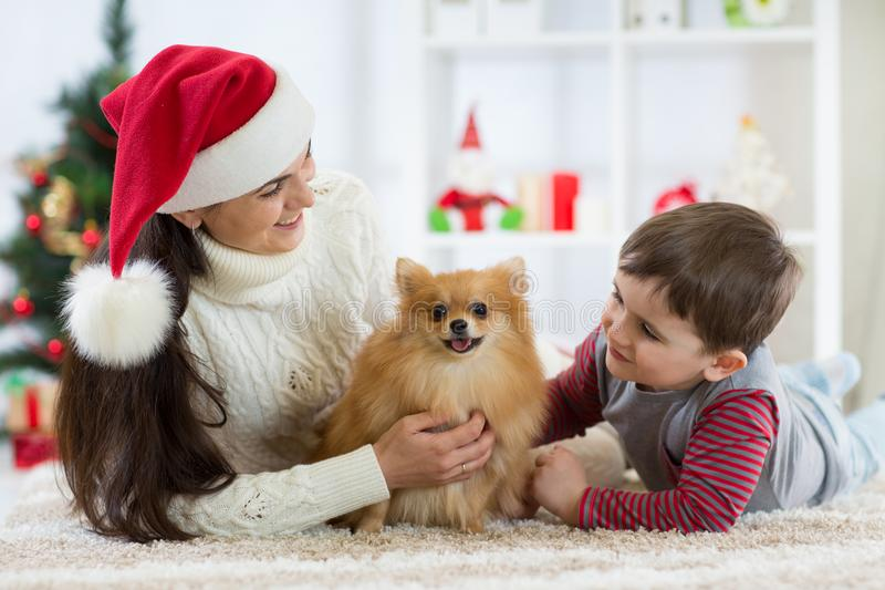 Woman and her son celebrating christmas with furry friend. Mother and kid with terrier dog. Pretty child boy with puppy royalty free stock images