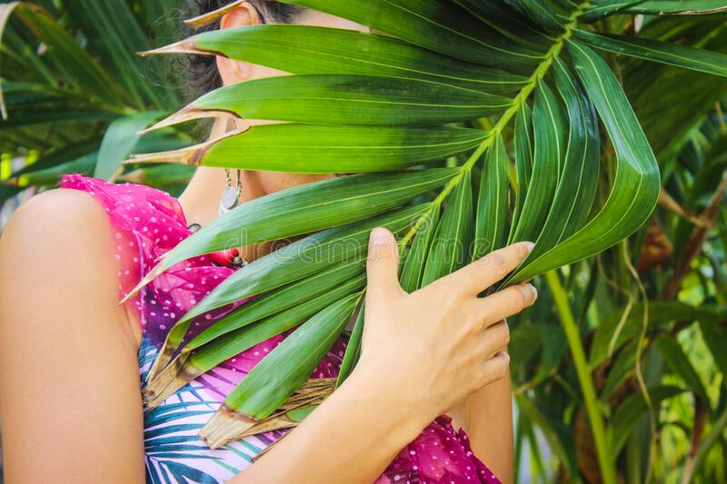 Woman hide face behind palm leave wearing colorful dress tropical island of Jamaica royalty free stock photo