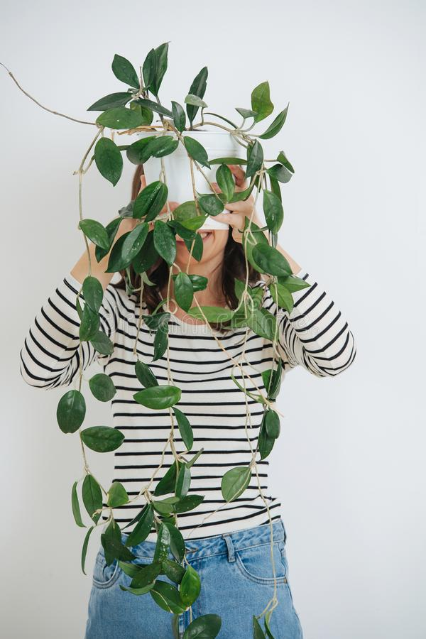 Woman, hiding her face behind a potted plant, she`s holding. Over white stock photos