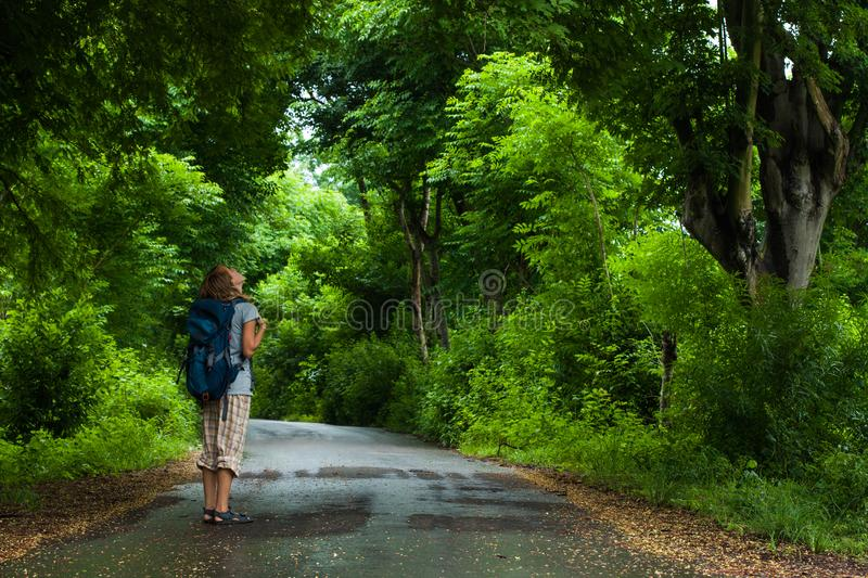 Woman hiker with backpack. Stands on the road and watches lush green foliage of the tropical trees stock image