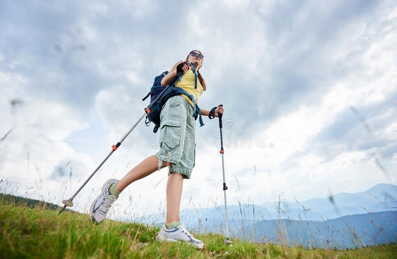 Woman hiker hiking on grassy hill, wearing backpack, using trekking sticks in the mountains. Low angle view of sporty woman tourist hiking mountain trail royalty free stock image