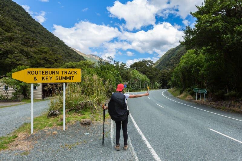 Woman hiker hitchhiking royalty free stock image